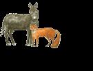 Waidelehof Logo